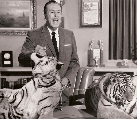 Walt and tigers